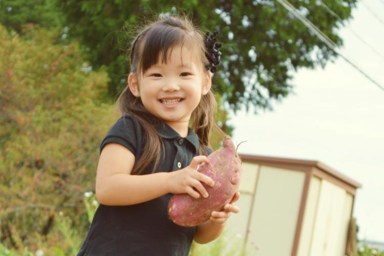 キャリー保育園 本八幡|管理栄養士|パート